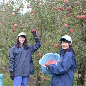 日常とは違う体験を!青森県つがる市の移住体験ツアー参加レポ