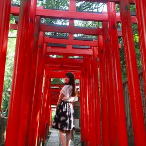 東京2020大会に向けて注目集まる 文京区の観光まち歩き